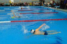Открытое первенство по плаванию «Рождественские старты 2016»