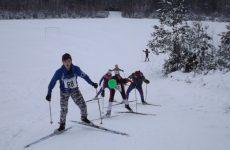 Открытое первенство ГУ «ДЮСШ Столбцовского района» по лыжным гонкам «Открытие лыжного сезона 2016-2017 гг.»