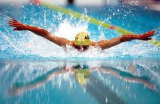 Платные группы по плаванию, которые занимались у Щербаковой Дарьи Сергеевны, просьба связаться с вашим новым тренером